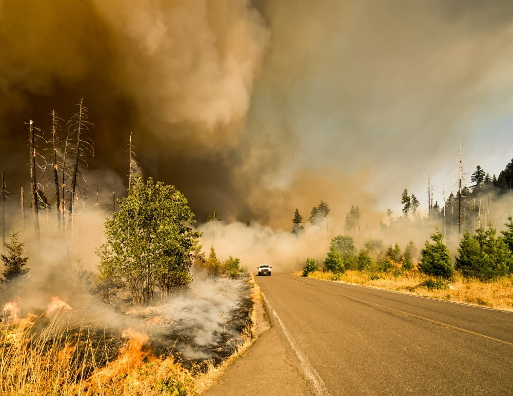 AI for social good - using AI for fire predictions